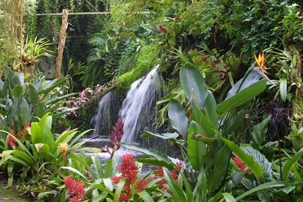 Tropische tuinen