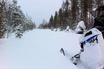 Sneeuw Zweden