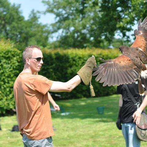 Roofvogelworkshop