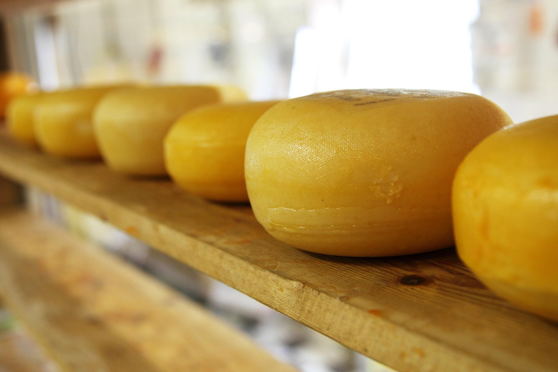 Zelf kaas maken!