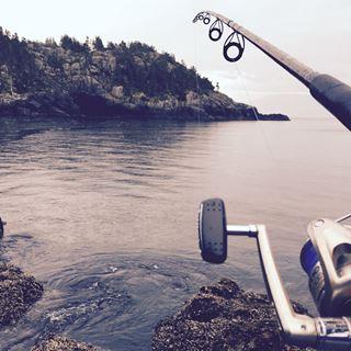 Zalm vissen in Zweden