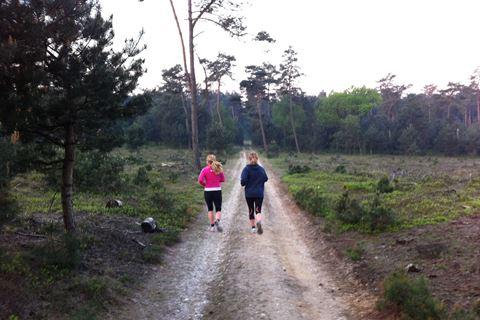 Safari joggen Veluwe