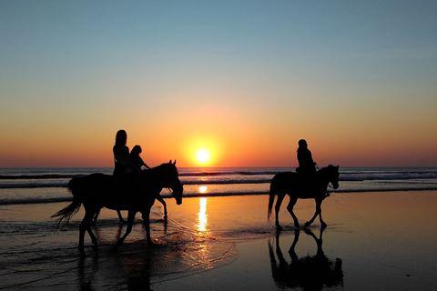 Paardrijden op het strand Zeeland