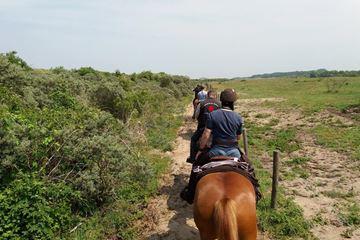 Paardrijden door de duinen