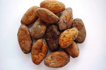 Cacao bonen