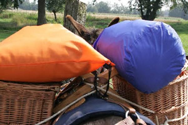 Picknick op ezel