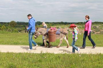 Wandeling ezel Achterhoek
