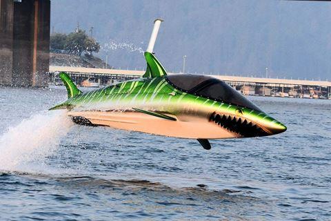 Vliegen door het water